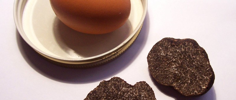 Truffle flavoured eggs with Iberian Ham