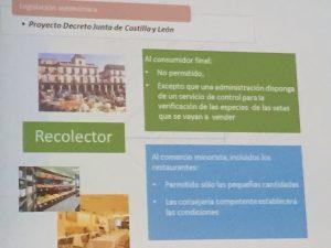 Regulación venta del recolector de setas y trufas