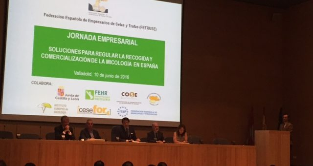 Se debaten en Valladolid las soluciones para la recolección y comercialización de setas y trufas en España