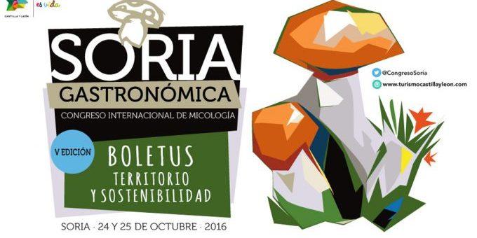 El V Congreso Soria Gastronómica reúne a los mejores cocineros micológicos