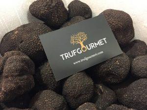 Extra black truffle from Trufgourmet SL