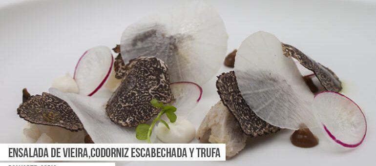 Encuentra la Ruta Dorada de la Trufa en Soria del 1 al 18 de febrero